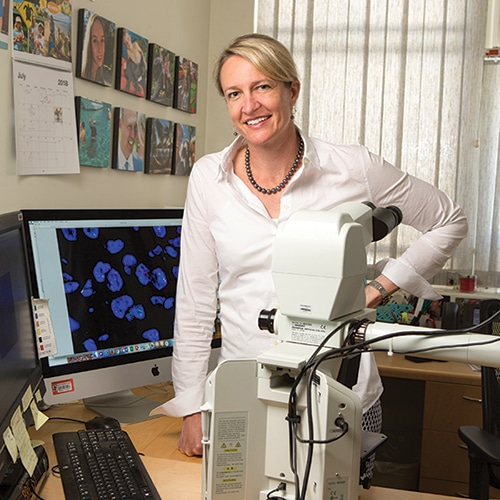 """As Dr. Kimberly Allison puts the new HER2 guideline into practice at Stanford, she's revising reporting templates and meeting with colleagues in the cytogenetics lab. """"In our reporting,"""" she says, """"we want to reflect the additional workup and that some of these result categories are unusual."""" [Photo: Cindy Charles]"""